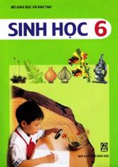 Sinh học 6